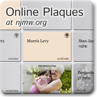 Online Plaques and Memory Pages