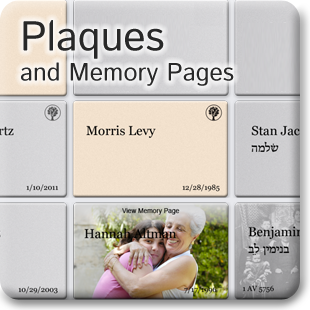 Plaques and Memory Pages